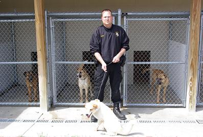 J.R. Nelson with dogs at the shelter
